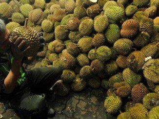 durian-enak-medan-780x390